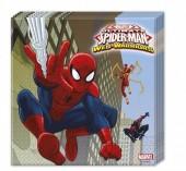 20 Guardanapos Festa Spiderman Warriors