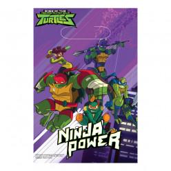 8 Sacos Festa Tartarugas Ninja Power