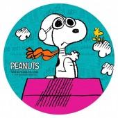 Decoração de bolo obreia de Aniversario Snoopy