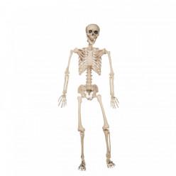 Esqueleto Halloween 120cm