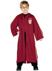 Fato Harry Potter Quidditch