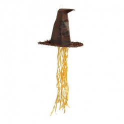 Pinhata Chapéu Harry Potter