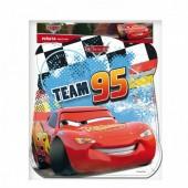 Pinhata Perfil Cars Team 95